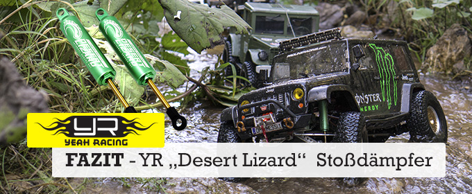 desert lizard yeah racing